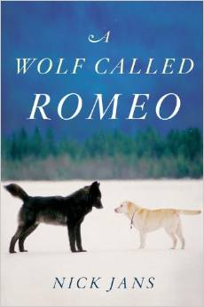 A Wolf Called Romeo – by Nick Jans