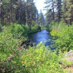 Metolius Recreation Area