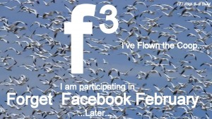 Forget Facebook February