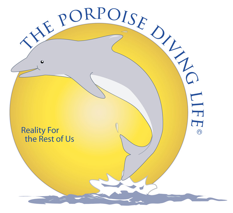 The Porpoise Diving Life  by Bill Dahl – Now in Paperback
