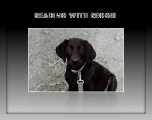 Reading with Reggie
