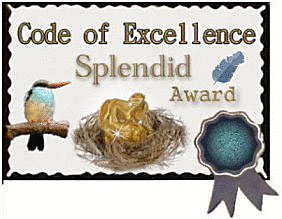 Code of Excellence Award
