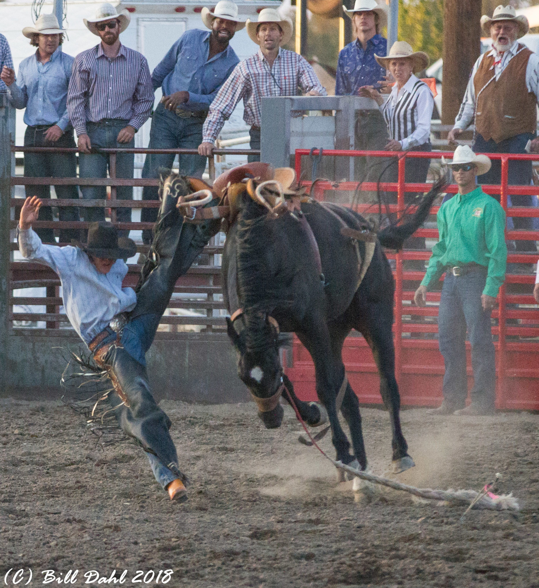 Deschutes County Fair And Rodeo August 2018 Images And